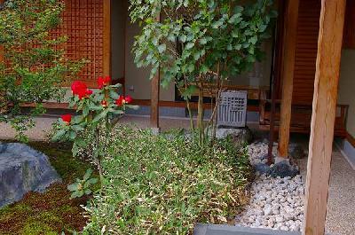 石楠花(シャクナゲ)と銀閣寺鉢