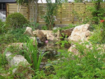 自然を育むビオトープのお庭 大津市