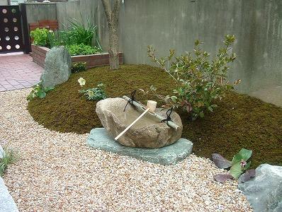 日陰を活かした苔のお庭 大津市