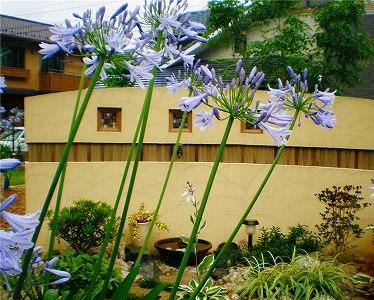 装飾性の高い目隠しでお庭の雰囲気作りを