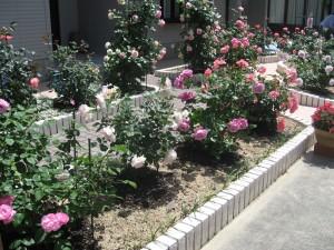タイルで波を表現した バラの花園 甲賀市